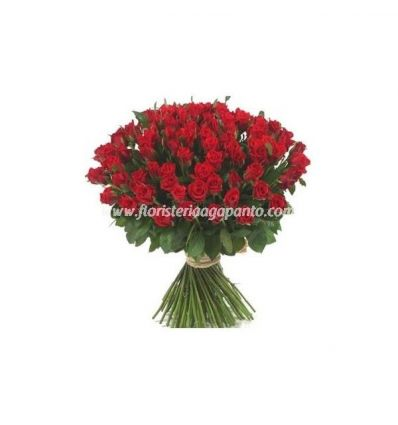 Red Roses in Special